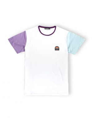 we ride local color block tee swell tshirt patch palm